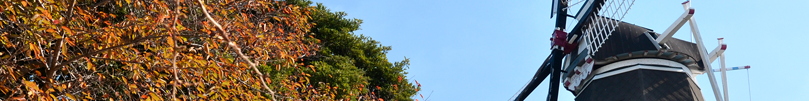 お問い合わせ - 新南陽商工会議所ホームページ | 周南市 新南陽地区(山口県) | 経営相談 資金繰り 新規創業 経営革新 検定試験など